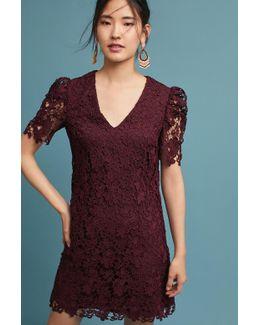Edith Lace Tunic Dress