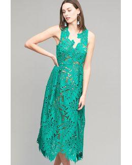 Aria Lace Midi Dress, Green