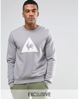 Gray Sweatshirt With Large Logo In Gray 1711096
