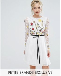 Premium Embroidered Floral Mini Skater Dress With Contrast Waist