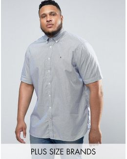 Plus Short Sleeve Shirt Stripe Buttondown In White/navy