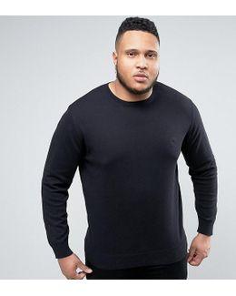 Plus Lightweight Crew Neck Sweater