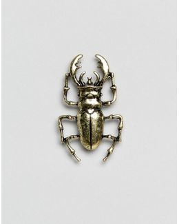 Beetle Pin Badge In Burnished Gold