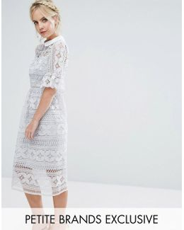 Allover Premium Lace Skater Dress With Peplum Sleeve Detail
