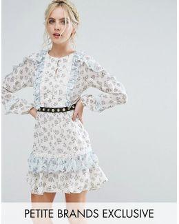 Frill Hem Skater Dress With Metal Belt Detail In Ditsy Floral Print