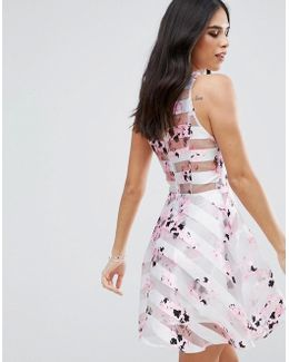 Floral Skater Dress With Mesh Panels