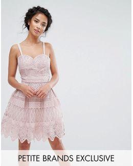 Chi Chi Petite Premium Paneled Lace Mini Dress With Cross Back Strap Detail