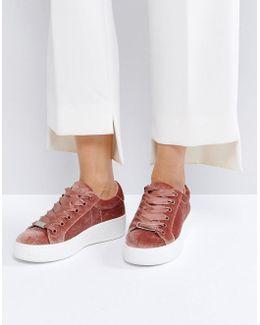 Bertie Blush Velvet Sneakers
