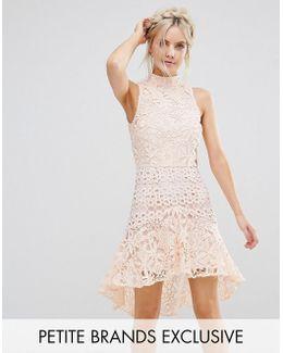 Allover High Neck Premium Lace Mini Dress