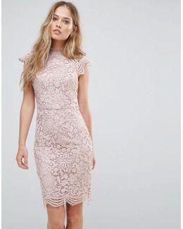 Scallop Lace Pencil Dress