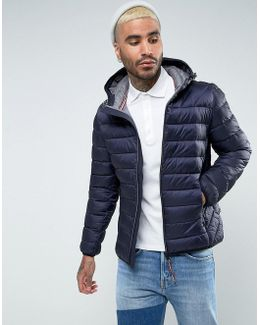 Aerons Quilted Hooded Jacket In Navy