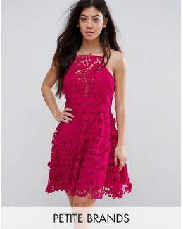 Petite Premium Lace Trim Skater Dress