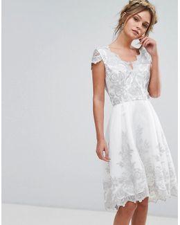 Premium Lace Cap Sleeve Midi Dress With Scalloped Back