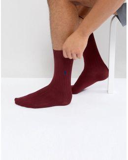 Egyptian Cotton Socks In Burgundy