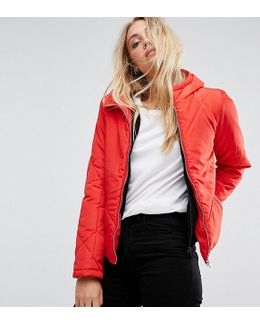 Padded Cropped Jacket With Hood