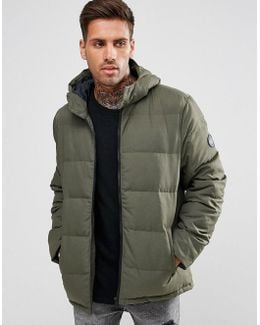 Quilted Jacket Hooded In Green