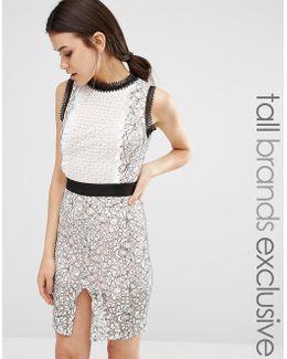 Scallop Lace Midi Pencil Dress