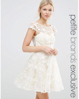 All Over 3d Floral Applique Mini Skater Dress