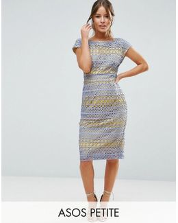 Occasion Lace Pencil Dress With Contrast Lining