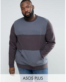 Plus Sweatshirt With Cut & Sew Panels