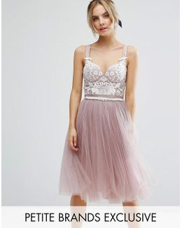 Chi Chi Petite Contrast Lace Corset Top Tulle Skirt Prom Dress