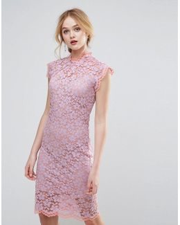 Contrast Floral Lace Shift Dress