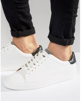 Hester Sneakers