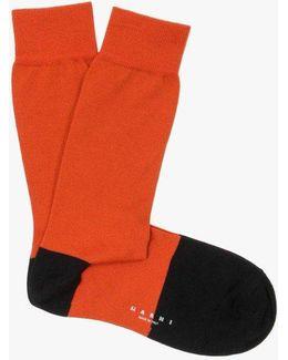 Toe Stripe Sock