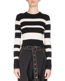 Crewneck Striped Knit Sweater