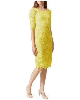 Miller Lace Sheath Dress