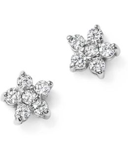 14k White Gold Diamond Mini Floral Cluster Stud Earrings