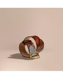 Snakeskin Intarsia Waist Belt Tan