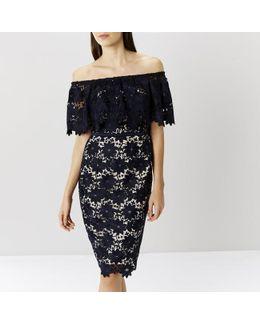 Patience Lace Shift Dress