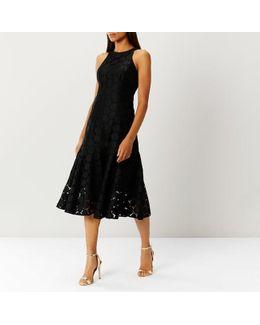 Chelsea Lace Dress