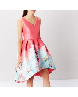 Sophie Printed Midi Dress