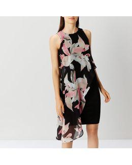 Victorie Print Arossa Dress
