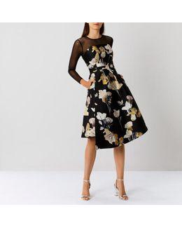 Mia Mesh Sleeve Midi Dress