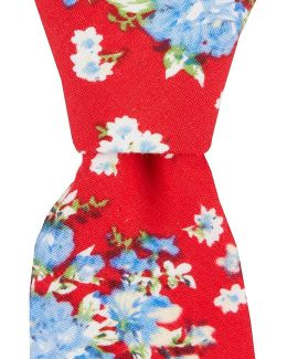 Boothe Floral Skinny Cotton Tie