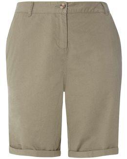Dp Curve Khaki Chino Shorts