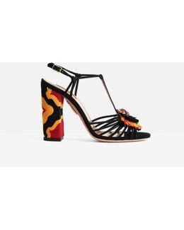 Samba Sandals 105