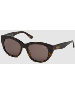 Brown Rounded Sunglasses