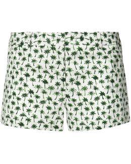 Palm Print Short Shorts
