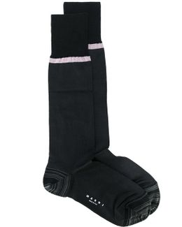 Stripe Trim Socks