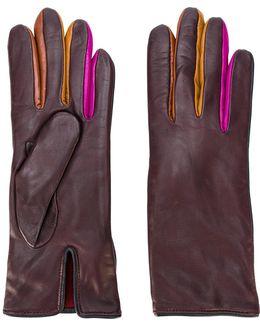Contrast Finger Panel Gloves