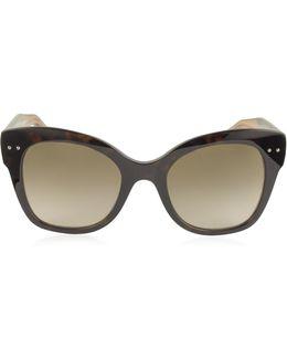 Bv0083s Acetate Cat Eye Women's Sunglasses