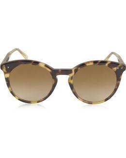 Bv0096s Round Acetate Women's Sunglasses