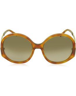 Ce 707s 725 Light Havana Acetate Square Women's Sunglasses