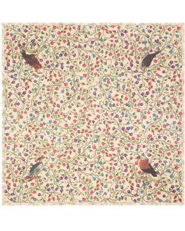 Birds Of Prey Modal Cotton Shawl