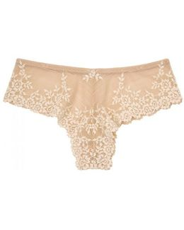 Embrace Lace Blush Briefs - Size S
