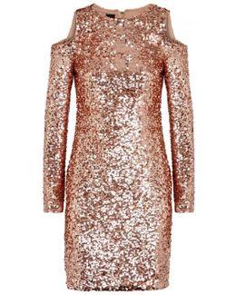 Rose Gold Sequinned Dress